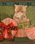 carte de Noël 3D chat 043